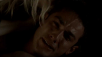 Forwood 4x10--
