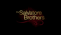 800-The Salvatore Brothers