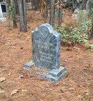 MF Cemetery Liz Forbes Tombstone
