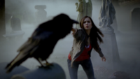 101-037-Elena-Crow