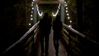 101-087~Elena~Stefan-The Fall