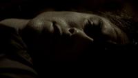 105-004~Stefan-Damon