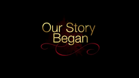 800-Our Story Began