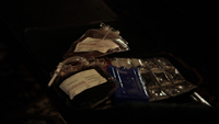 108-Blood Bags