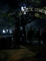 Lafayette Cemetery3