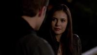 101-100-Elena~Stefan