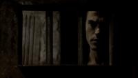 105-063-Stefan~Damon