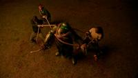 LGC301-115-Jed-Wade-The Green Knight-Kaleb