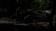 The Vampire Diaries - Piloto - 65