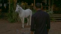 LGC111-069-Unicorn~Dorian