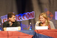 2010 NYCC 26