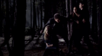 Stefan saves Caroline in 4x16
