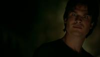 808-005~Stefan-Damon