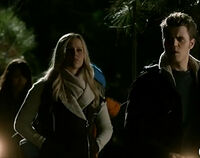 Tvd-expedition-into-the-wild