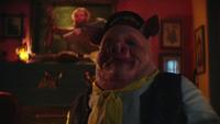 LGC216-065-Pig