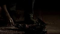 105~Stefan-Crow