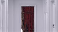 TO507-104-Red Door~Elijah's Mind
