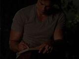 Damon's Diary