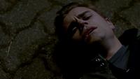 101-141-Stefan~Damon