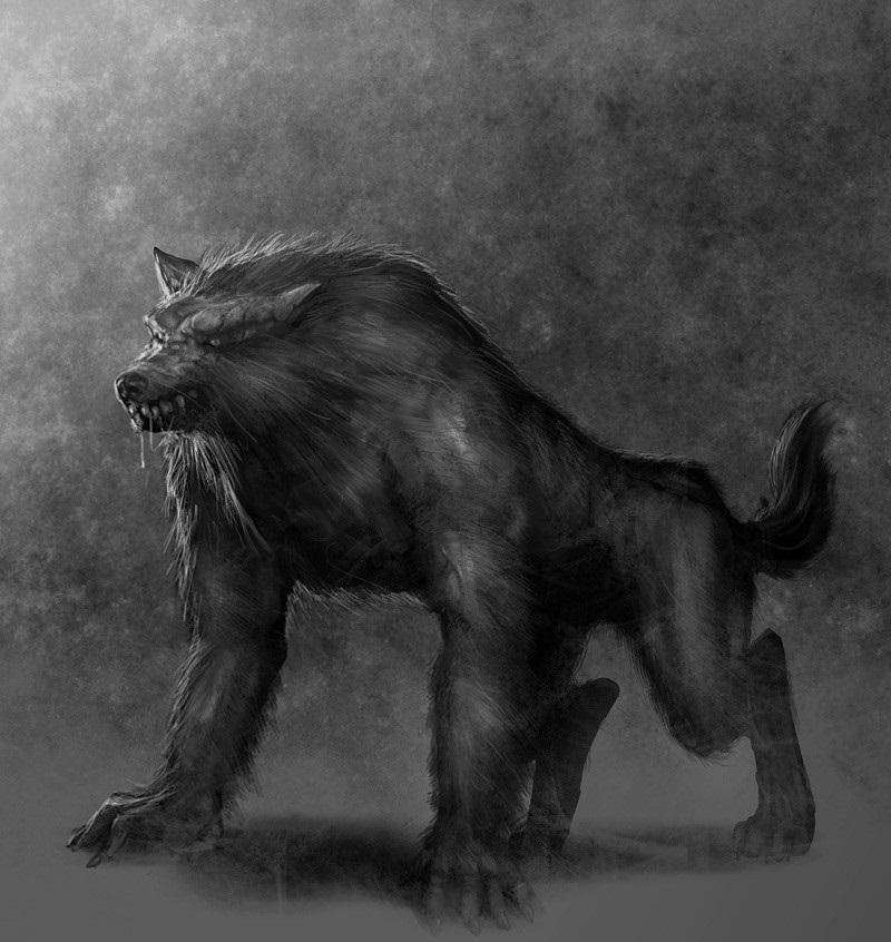 Werewolf (Novels)