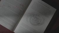 LGC110-152-History of the Gemini Coven Book
