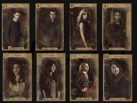 The Originals-Tarot cards