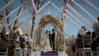 815-105~Stefan~Damon~Caroline-Wedding