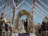 Stefan and Caroline's wedding