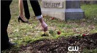 Grave-Rose