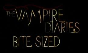 Bite Sized Logo