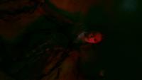 LGC212-140-Dark Magic-Josie