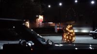 Bonnie-and-christmas-tree