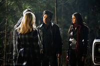 Fool-me-once-1x14-the-vampire-diaries-tv-show-10132070-500-333