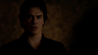 718-113~Stefan-Damon