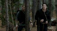 Damon-leash