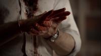 Blood6