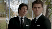 815-083-Stefan-Damon-Wedding