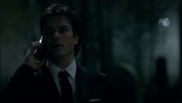 816-036~Stefan-Damon