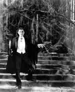 Dracula Greetings