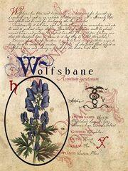 Baea29ca5ec062d973399a1c26a7f5bc--magic-herbs-herbal-magic.jpg