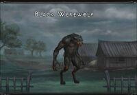 Black werewolf.jpg