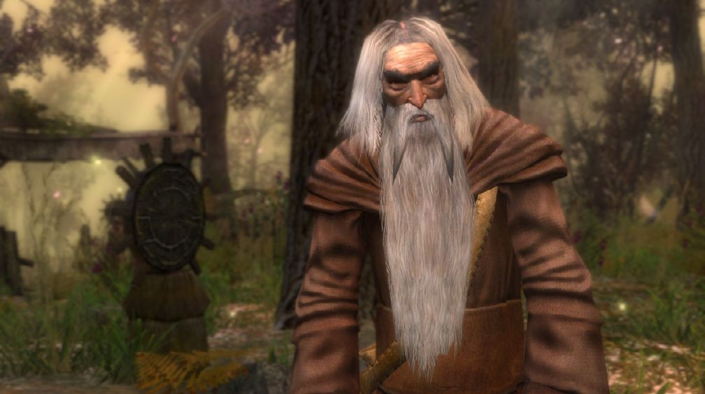 Старший друид