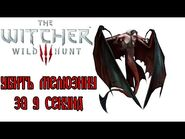 The Witcher 3- Melusine in 9 seconds (WR)