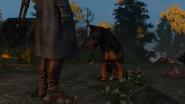 Собака2В3