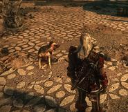 Собака1В2