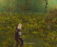 Лес на болотах1В1