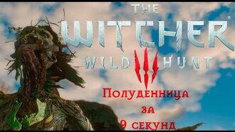 The_Witcher_3_-_Noonwraith_in_9_seconds(World_record)_-_на_смерть+повышенный_уровень+no_интерфейс