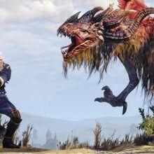 Geralt vs Royal Wyvern copy.jpg
