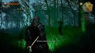 TheWitcher 3 WildHunt - Мышиная башня-0