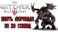 The Witcher 3 Morvudd in 20 seconds (WR)